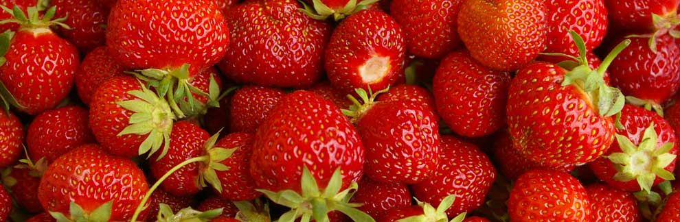 strawberries01.jpg